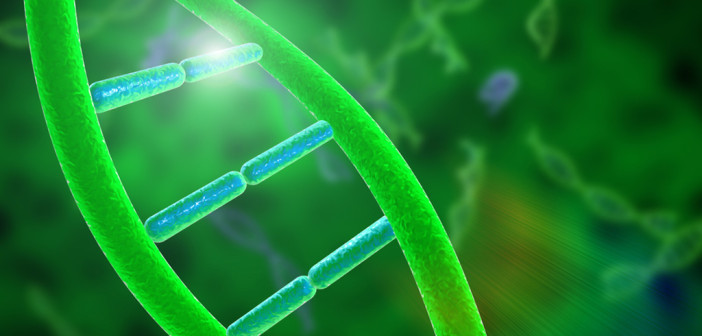 Gene und DNA © Oliverfiction96 / shutterstock.com