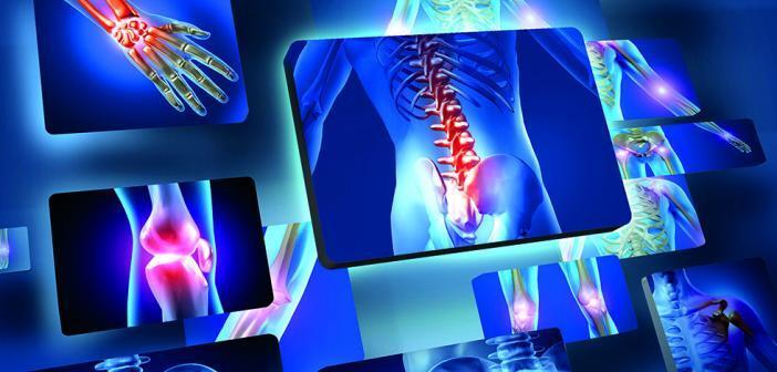 Ob Schulter, Hüfte oder Knie – Arthrose kann zu chronischen Schmerzen führen. © Sebastian Kaulitzki / shuttestock.com