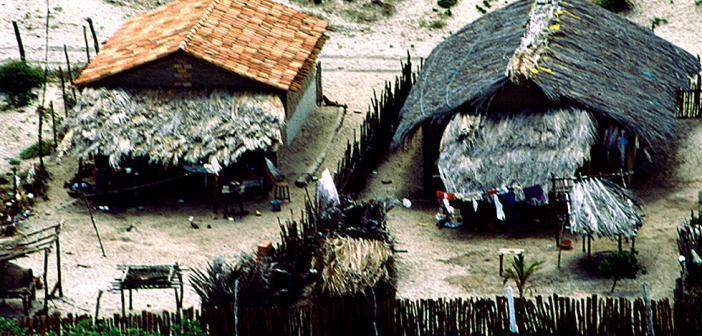 Morbus Chagas ist in südamerikanischen Dörfern durch die Anwesenheit von Raubwanzen weit verbreitet. © Traxler