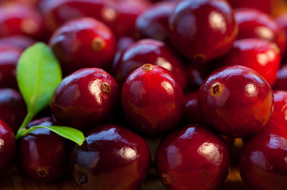 Cranberries bei Harnwegsinfektionen sind vor allem präventiv erfolgreich. @ sarsmis / shutterstock.com