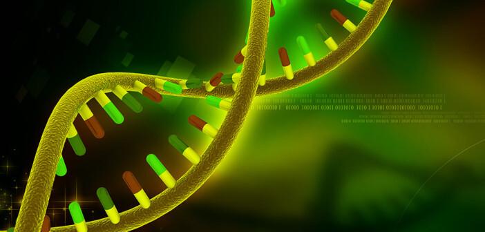 Die Abbildung zu Gen-Analysen zeigt eine digitale Konstruktion einer DNA. © Creations / shutterstock.com