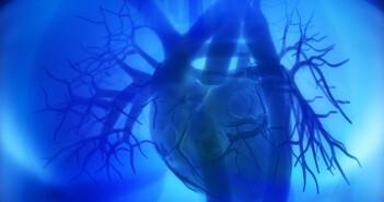 Als akutes Koronarsyndrom werden eine Reihe von akuten Herz-Kreislauf-Erkrankungen bezeichnet. © CLIPAREACustom-media / shutterstock.com