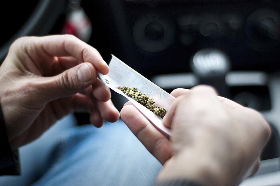 Marihuana kann laut einer neuen Untersuchung bei Jugendlichen zu Entzugserscheinungen führen © Nikita Starichenko / shutterstock.com