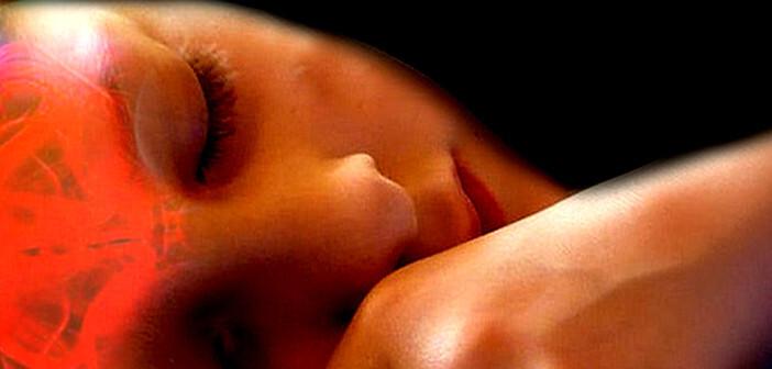 Schäden durch Schlafmangel führen zu verändertem Gehirnvolumen. © www.afcom.at
