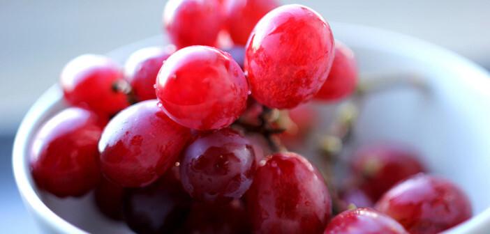 Das in relativ großen Mengen in der Haut von roten Weintrauben vorkommende Resveratrol gegen Akne könnte die Therapie der Hauterkrankung stark verbessern. © Christian Schnettelker / flickr.com