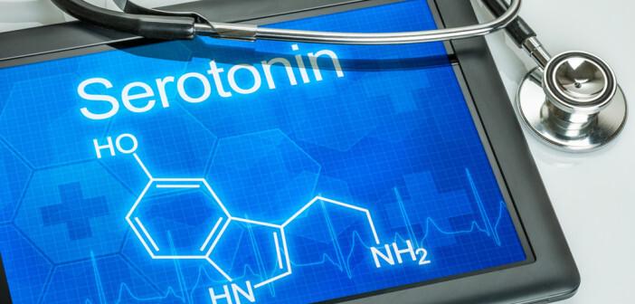 95% des im Körper vorhandenen Serotonin ist in der Blutbahn zu finden. © Zerbor / shutterstock.com
