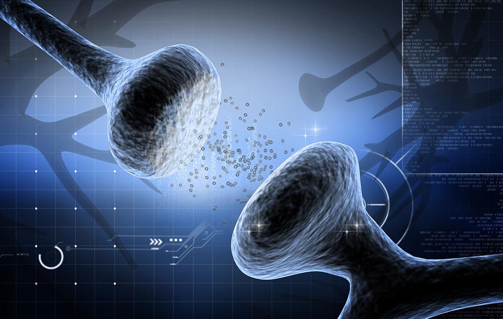 Digitale Illustration von Serotonin und Synapsen. © Creations / shutterstock.com
