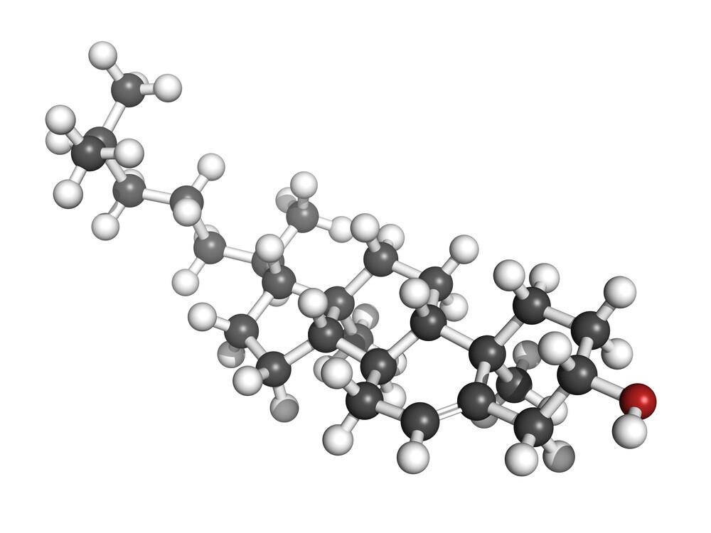 Die Wirkung von Statinen wird kontrovers diskutiert. molekuul.be / shutterstock.com