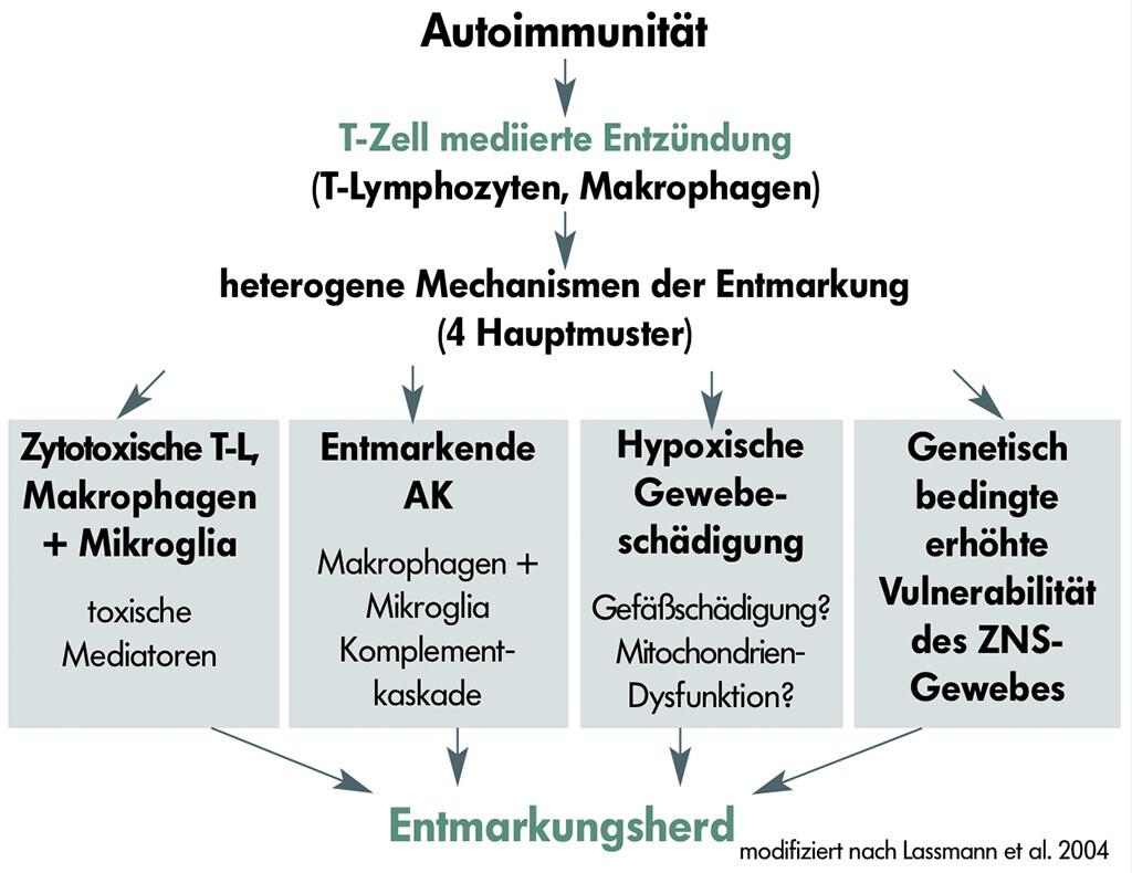 Grafik Entmarkungsherd