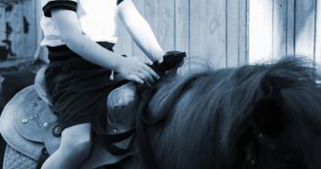 Fast die Hälfte aller Unfälle mit Pferden passiert nicht während des Reitens, sondern bei der Pflege oder beim Führen. © Alexander Lukatskiy / shutterstock.com