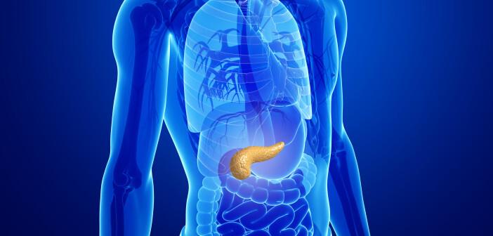 Der bösartige Pankreastumor ist die tödlichste aller häufigen Krebserkrankungen. © S K Chavan / shutterstock.com