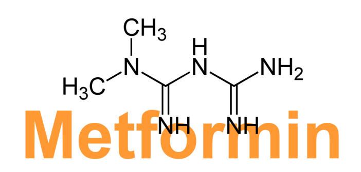 Ist der Diabetes-Wirkstoff Metformin gegen Hypercholesterinämie einsetzbar?