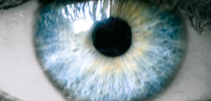 Fehlgebildete, unkontrolliert wachsende Blutgefäße können Netzhautschäden verursachen.