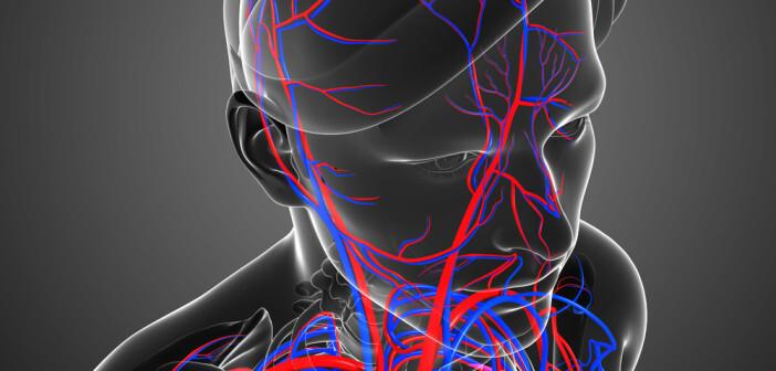 Durchblutungsstörungen bei Diabetes Typ-2 wirken sich negativ auf die kognitiven Fähigkeiten aus.. © S K Chavan / shutterstock.com