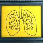 Wissenschafter untersuchten den Prozess, der stattfindet, wenn die Lunge ihre Wunden heilt. © Hey Paul Studios / flickr Creative Commons