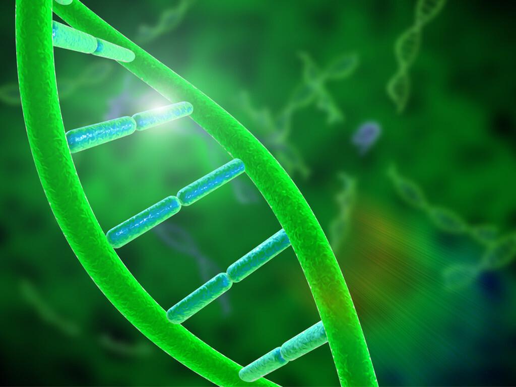 Genotyp-positive Ernährung