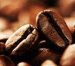Zur Vorbeugung und auch zur Behandlung scheint Koffein gegen Alzheimer geeignet zu sein. © er ryan / shutterstock.com