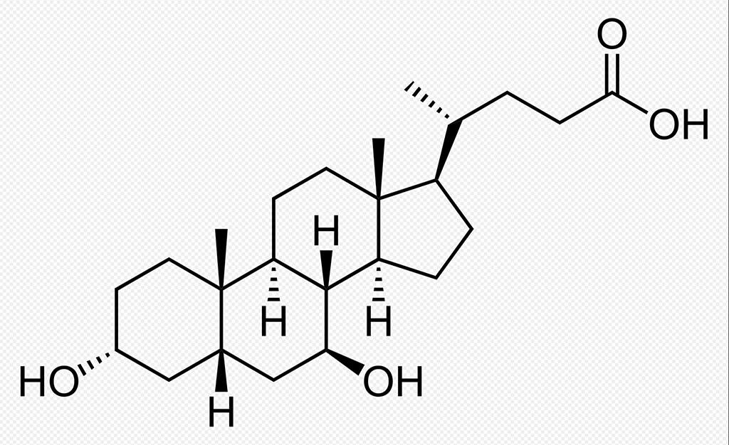 Strukturformel des neuen Hoffnungsträgers Ursodeoxycholsäure gegen Parkinson.