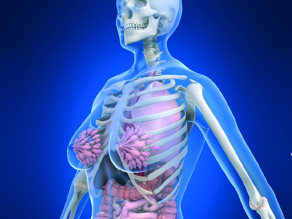 Frauengesundheit ist mittlerweile gut etabliert. © Sebastian Kaulitzky / shutterstock.com