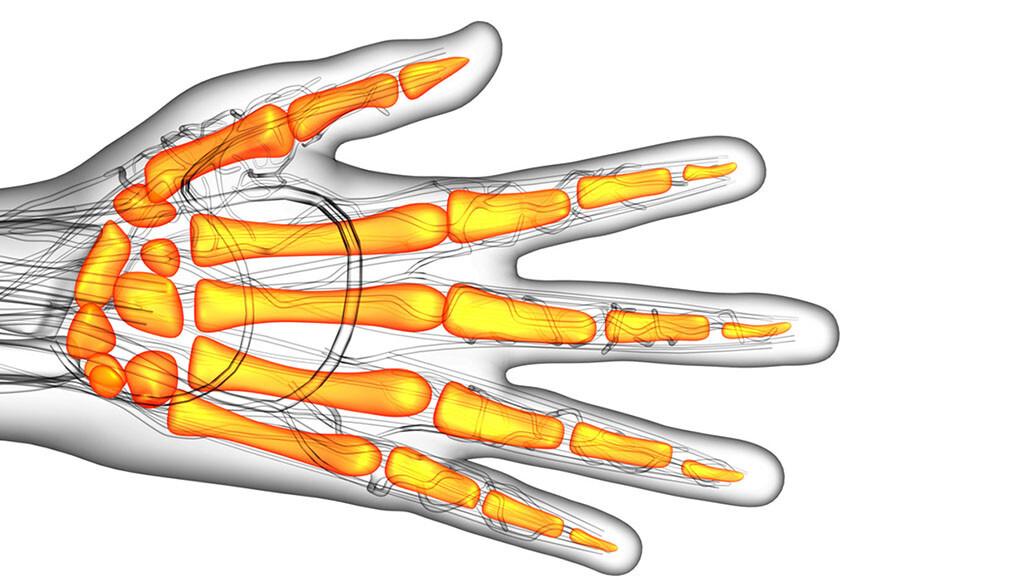 So früh wie möglich sollte man steife Fingergelenke behandeln. © Maya2008 / shutterstock.com