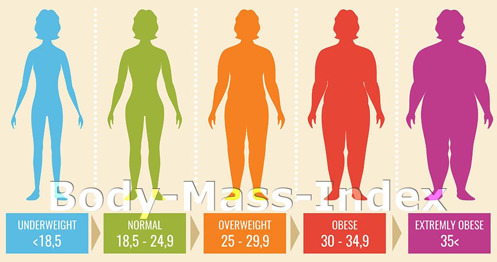 24 5 frau bmi BMI Rechner