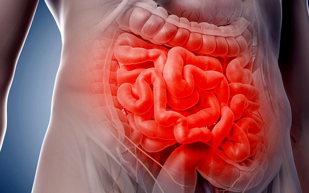 Die Therapie von Abdominalschmerzen orientiert sich nach Anamnese, Schmerzlokalisation und Befund. © Sebastian Kaulitzki / shutterstock.com