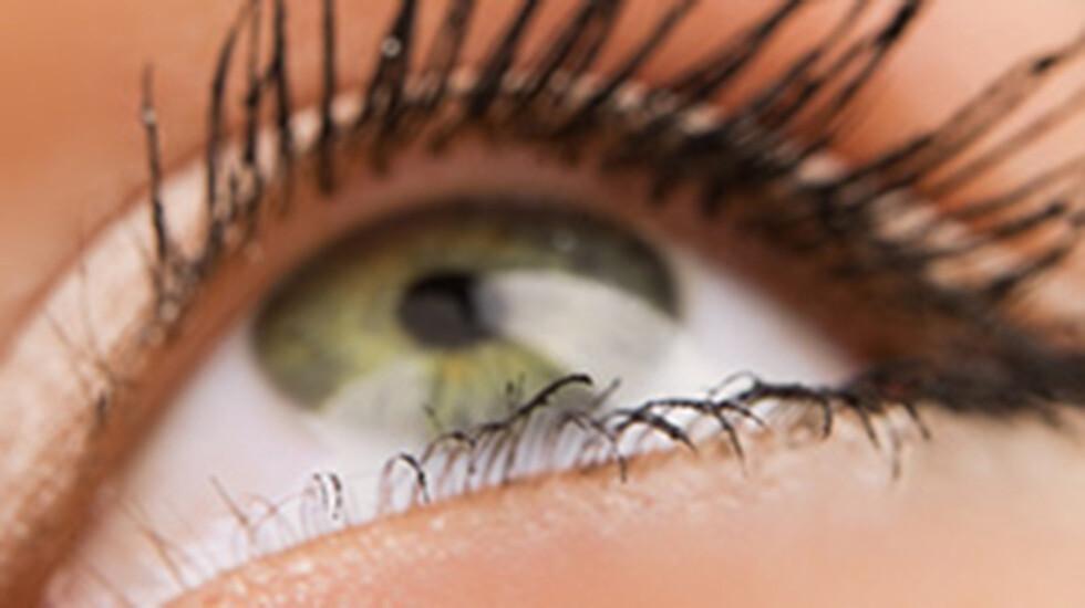 Ganze Schulklassen voller Brillenträger? Augenärzte rechnen in Deutschland mit einem deutlichen Anstieg von Kurzsichtigkeit bei Kindern. © Wallenrock / shutterstock.com