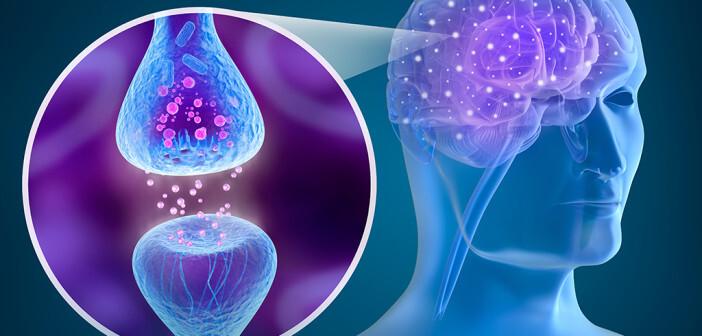 Fenofibrate sollen zur Aktivierung der Cannabinoid-Rezeptoren führen können – mit positiven Wirkungen beispielsweise gegen Schmerzen. © Alex Mit / shutterstock.com