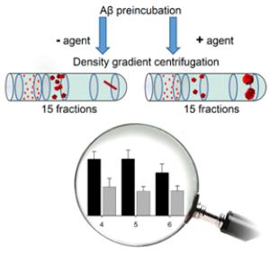 Die QIAD-Methode kann ermitteln, wie ein Wirkstoff auf die unterschiedlichen Aggregat-Größen wirkt. © Forschungszentrum Jülich /HHU