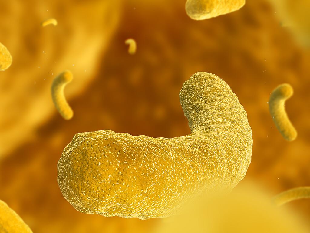 Bei Fieber unbekannter Ursache liegt meist eine weit verbreitete Krankheit mit ungewöhnlicher Präsentation als eine seltene Erkrankung vor. © Naumov S / shutterstock.com