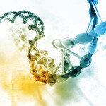 Eine besondere Herausforderung besteht jetzt darin, im Detail aufzuklären, über welche molekularen Mechanismen die identifizierten Genvarianten das Risiko für Entzündungskrankheiten im Allgemeinen und für Neurodermitis im Speziellen erhöhen. © hywards / shutterstock.com