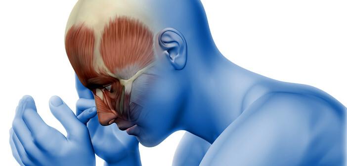 Wenn Betroffene durch die Anfälle häufig krankgeschrieben oder in sonstigen Tätigkeiten eingeschränkt sind bzw. die Anfälle unerträglich sind, sollte eine Migräneprophylaxe angedacht werde. © Kjpargeter / shutterstock.com