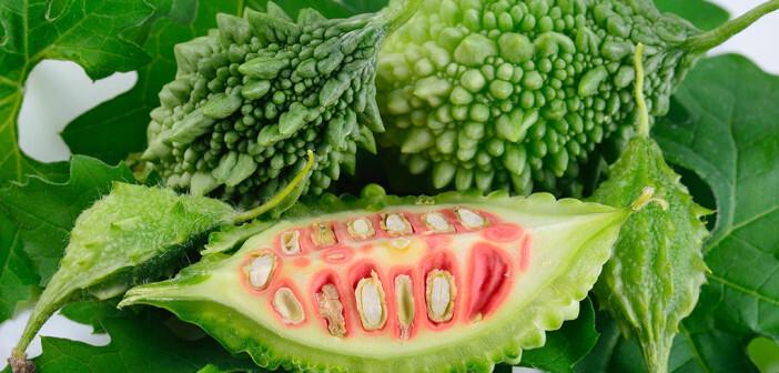 Die additive Anwendung von Bittermelone – auch Bitterguke genannt – ist zusätzlich zur medikamentösen Therapie, zu richtiger Ernährung und Bewegung bei Typ-II-Diabetikern immer unter ärztlicher Aufsicht durchzuführen. © MRS.Siwaporn / shutterstock.com