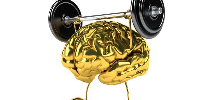 Die Bewegungs- bzw. Konzentrationsübungen wirkten sich auf die Aktivität von Synapsen und Nervenzellen aus und aktivieren so bestimmte Hirnareale. © Julien Tromeur / shutterstock.com