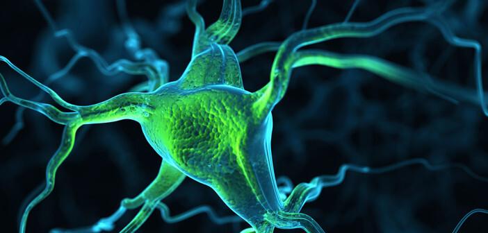 Die periphere Nervenstimulation soll Betroffenen mit chronischen Rückenschmerzen helfen, den Alltag aktiver zu begehen und die allgemeine Lebensqualität zu steigern. © Leigh Prather / shutterstock.com