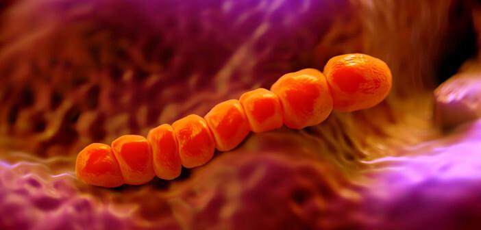 Ein Erregernachweis bei Lungenentzündung bei alten Menschen ist im ambulanten Bereich schwer durchführbar. © royaltystockphoto.com / shutterstock.com