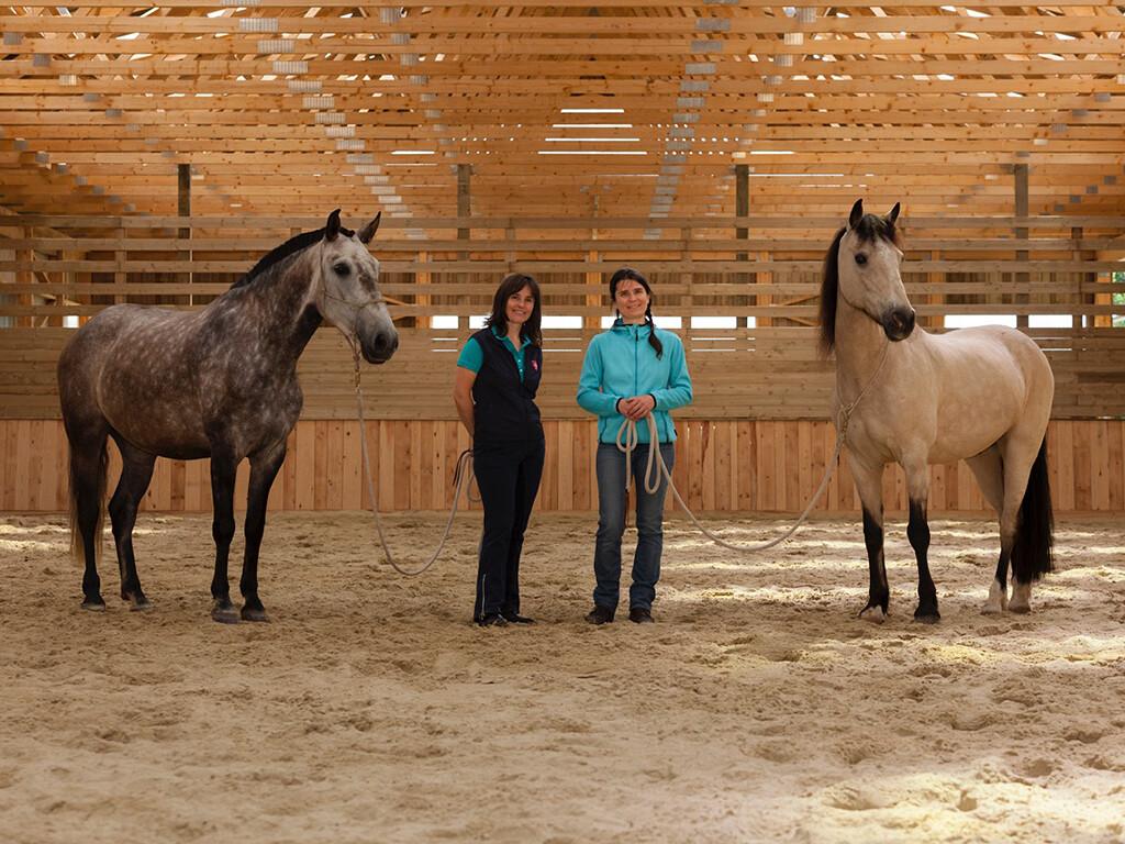 Therapie mit Pferden3