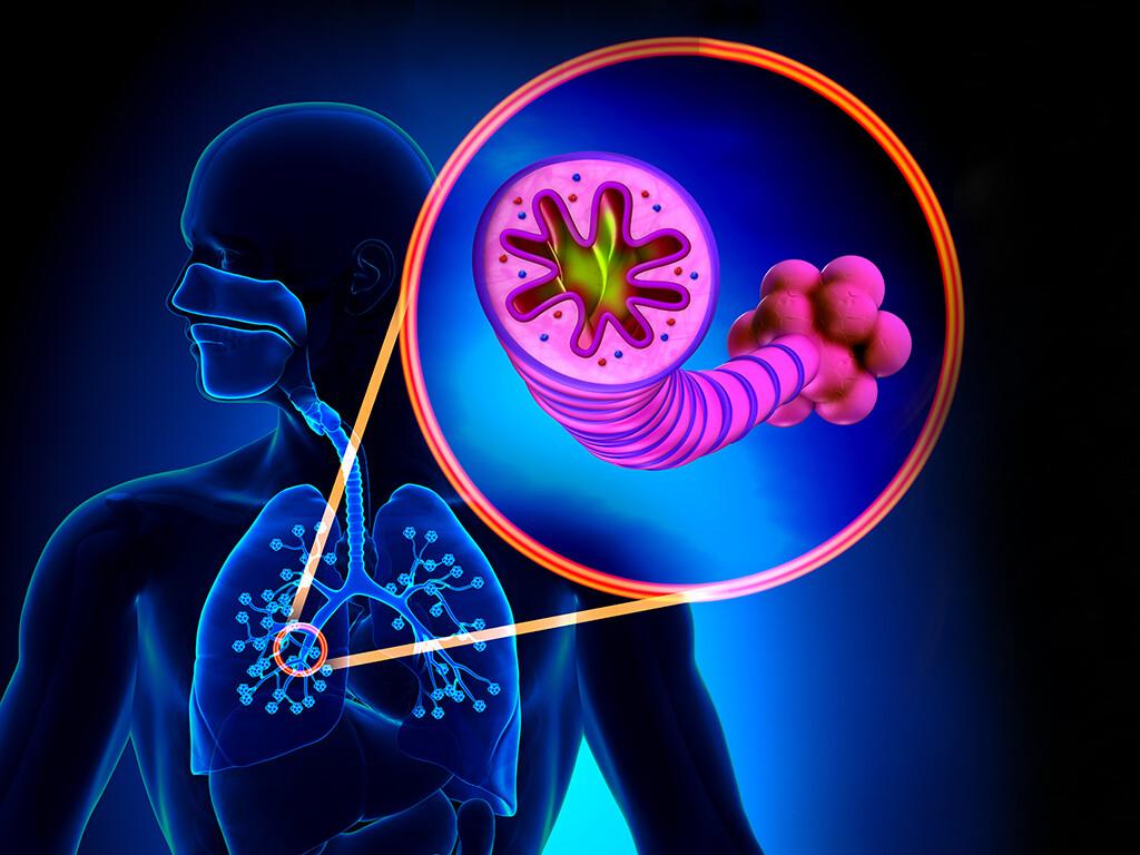 Dieses COPD-Audit zeigt die Defizite der Versorgung von Patienten mit Lungenversagen aufgrund einer akuten COPD-Exazerbation auf. © decade3d anatomy online / shutterstock.com