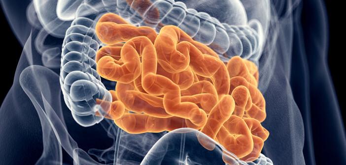 Chronische Obstipation – Verstopfung – ist keinesfalls nur eine banale Befindlichkeitsstörung ohne Krankheitswert. © Sebastian Kaulitzki / shutterstock.com