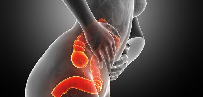 Das Reizdarm-Syndrom quält rund zehn bis 15 Prozent der Menschen in den Industrieländern. © Sebastian Kaulitzki / shutterstock.com