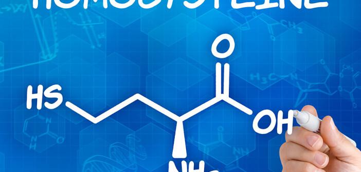 Homocystein wird sowohl mit der Zerstörung des Gefäßendothels als auch mit Veränderungen der Prostazyklinbiosynthese sowie einer Erhöhung der Low-Density-Lipoproteine in Verbindung gebracht. © Zerbor / shutterstock.com