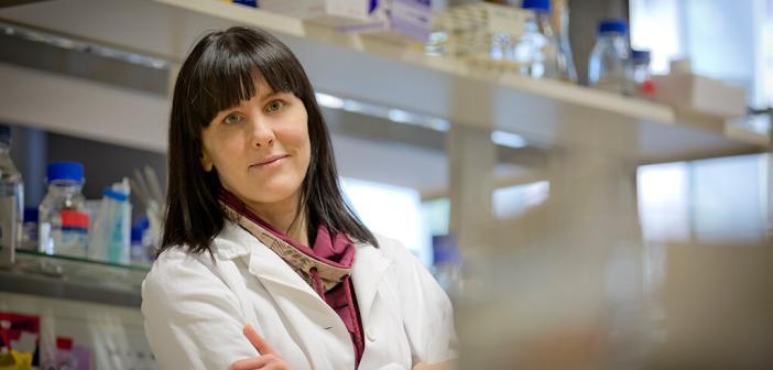 Sabine Kienesberger-Feist untersuchte die Auswirkungen einer Helicobacter pylori-Infektion mit überraschenden Ergebnissen. © Uni Graz / Lunghammer