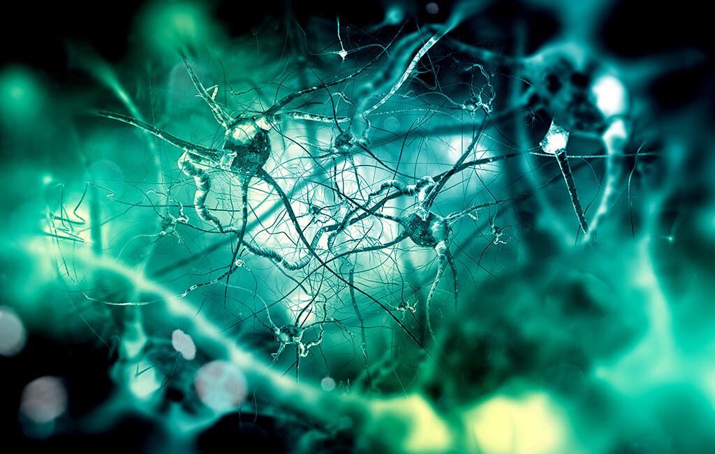 Oxycodon-Naloxon könnte gegen parkinsonbedingte Beschwerden eine Alternative zur gängigen Behandlung mit erhöhter dopaminerger Wirkstoffdosis sein. © Andrii Vodolazhskyi / shutterstock.com