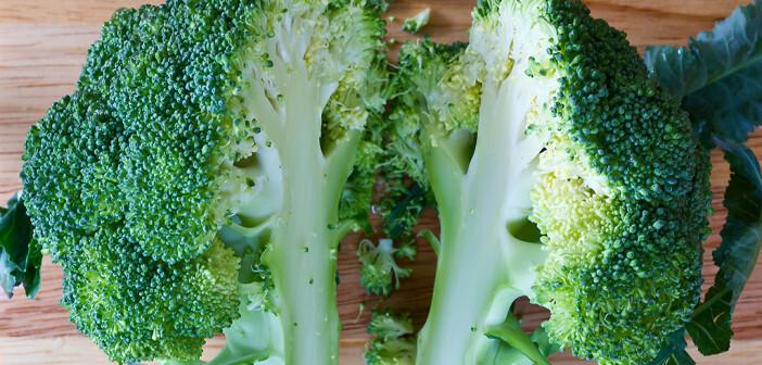 Die verwendete Konzentration an Sulforaphan entsprach in etwa jener, die nach dem Verzehr einer Portion Broccoli in den Darm gelangt. © Blur Day Blur Night / shutterstock.com