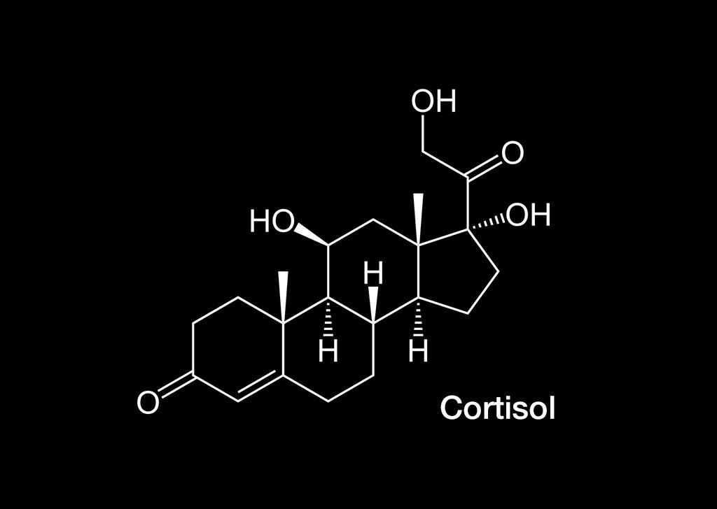 Strukturformel von Cortisol. © NEUROtiker / Wikimedia
