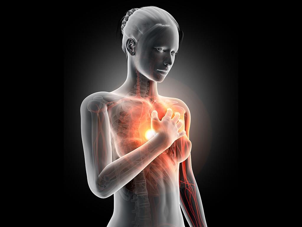 Frauenherzen haben heutzutage ein höheres Risiko für einen tödlichen Herzinfarkt. © Sebastian Kaulitzki / shutterstock.com