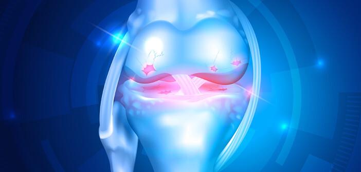 Wichtig ist, Patienten mit Gelenkschmerzen möglichst rasch in Bewegung bringen und eine Chronifizierung der Schmerzen zu verhindern. © Tefi / shutterstock.com