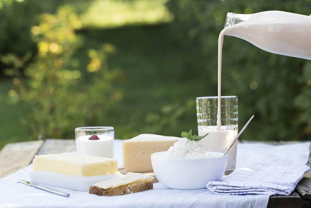 Molkenprotein-Quellen aus Milchprodukten sind als proteinreiches Frühstück eine guteWahl (wenn keine anderen Kontraindikationen bestehen). © ksenee / shutterstock.com