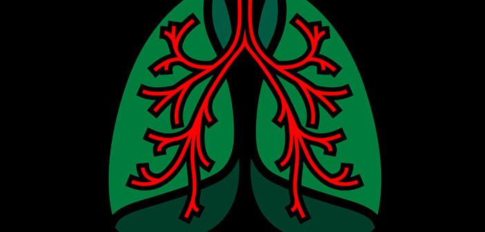 Asthma Imagebild. © Double Brain / www.shutterstock.com