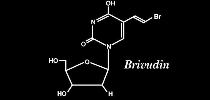 Die einmal täglich angewendete, therapeutisch ausreichende Tablette mit Brivudin fördernt die Compliance.